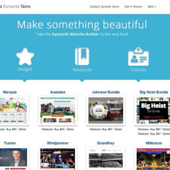 Best Dynamik Skins (WordPress Themes)